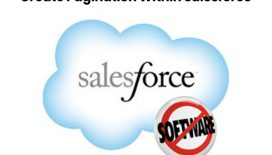 Create-Pagination-Within-Salesforce