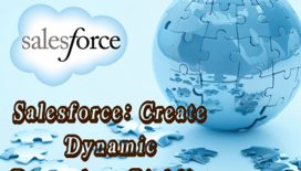 How-To-Create-Dynamic-Dependent-Picklist-Of-Objects-Within-Salesforce