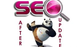SEO-after-panda-update