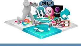Why-Choose-Custom-Web-Development