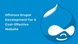 Offshore-Drupal-Development-For-A-Cost-Effective-Website