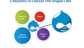 5-reasons-choose-drupal