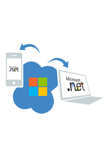 dot net development company