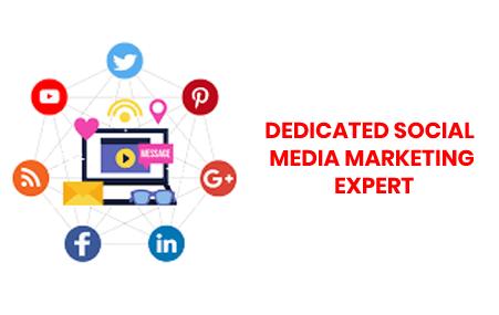 dedicated social media marketing expert