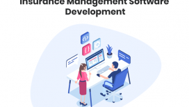 Insurance Management Software Development