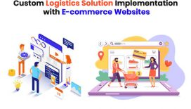 Custom Logistics Solution Implementation with E-commerce Websites